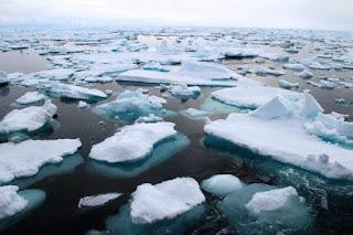 Cara Untuk Mengatasi Perubahan Iklim