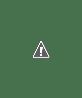 Jornada de sustentación 2021