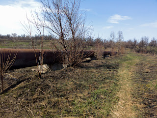 Водопропускна труба і залишки гідротехнічної споруди біля річки Сінної