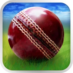 Cricket WorldCup Fever Android Apk