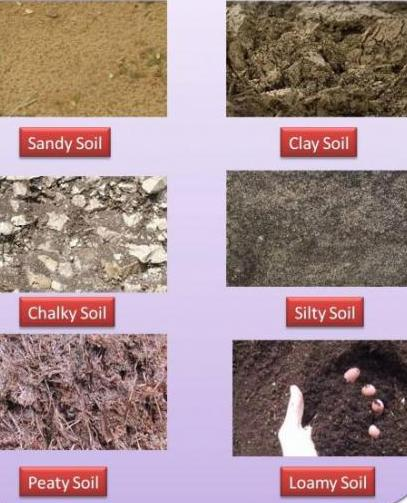 Lesson plan of types of soil general science grade v for Different uses of soil