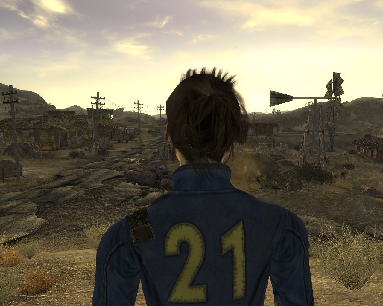 Dress-Up New Vegas (or, best mods & cheats for getting armor in