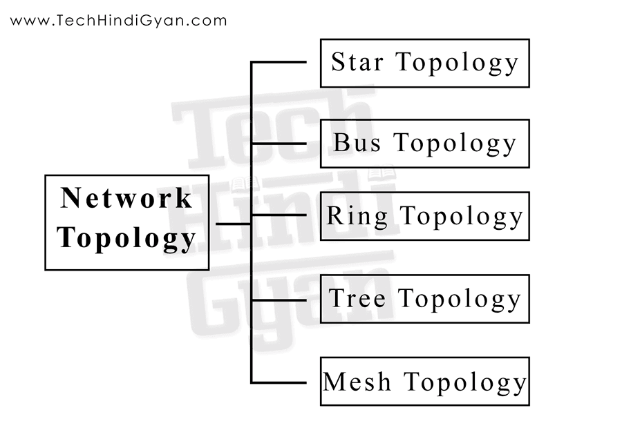 Network Topology, Star Topology, Bus Topology, Ring Topology, Tree Topology, Mesh Topology