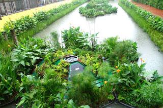 jardins flutuantes