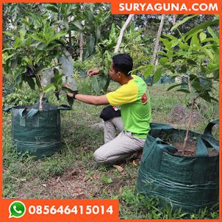 Planter Bag 200 Liter Murah dan Awet