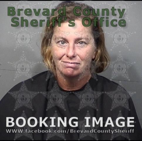 Brevard County Mugshots July 24, 2019