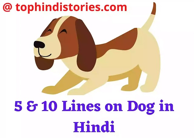 10 Lines on Dog in Hindi l My Pet [ 5 Points & Sentences ]