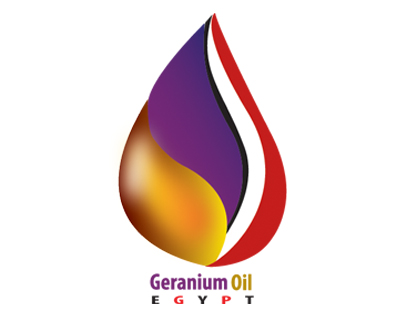 Oil and Gas Logo Design  Tailor Brands