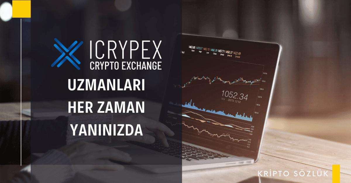icrypex kripto para borsası