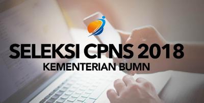 Pendaftaran CPNS 2018 Kementerian BUMN informasi lengkap formasi Jabatan, Kualifikasi Pendidikan, Jabatan, dan alokasi formasi syarat pendaftaran dokumen berkas penempatan