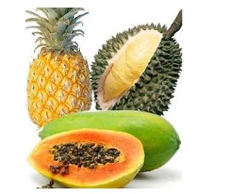 Buah Durian Untuk Aborsi Kandungan
