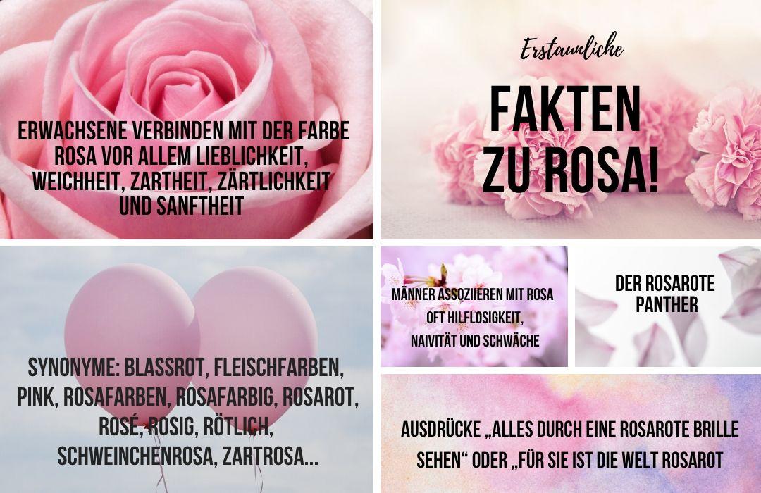 Fakten-zu-Rosa