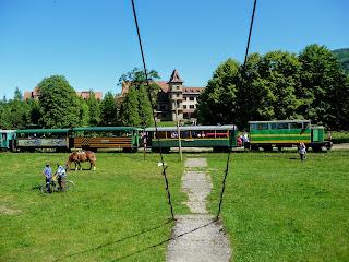 Вигода. Екскурсія по вузькоколійці карпатським трамваєм