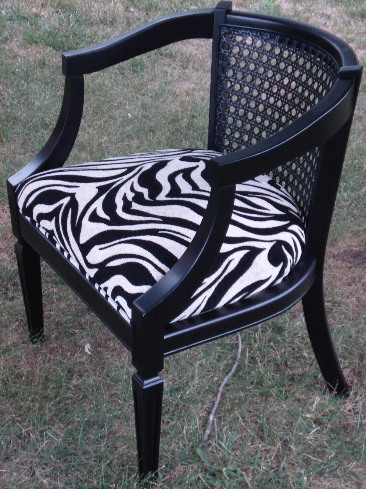 Zebra Accent Chair Vintage Gypsy Homegoods Zebra Accent Chair