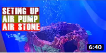 How To Install Airpump and Airstone in Aquarium