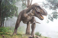 Tyrannosaurus rex - Unsplash.com