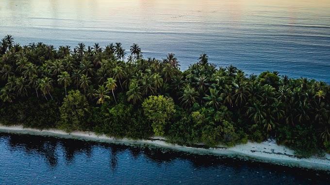 Tela de Fundo Pôr do Sol, Mar, Ilha Tropical, Palmeiras