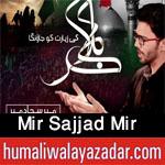 https://humaliwalayazadarcom.blogspot.com/2017/09/mir-sajjad-mir-nohay-2018.html
