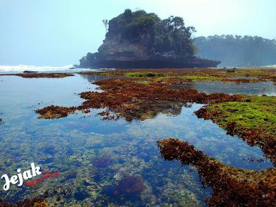 akcayatour, Pantai Jonggring Saloko, Travel Jogja Malang, Travel Malang Jogja, Wisata Malang
