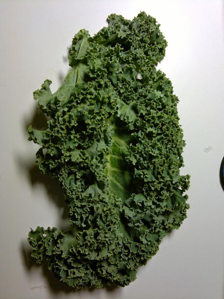 Bild på grönkål. Nyttig mat enligt Fuhrman