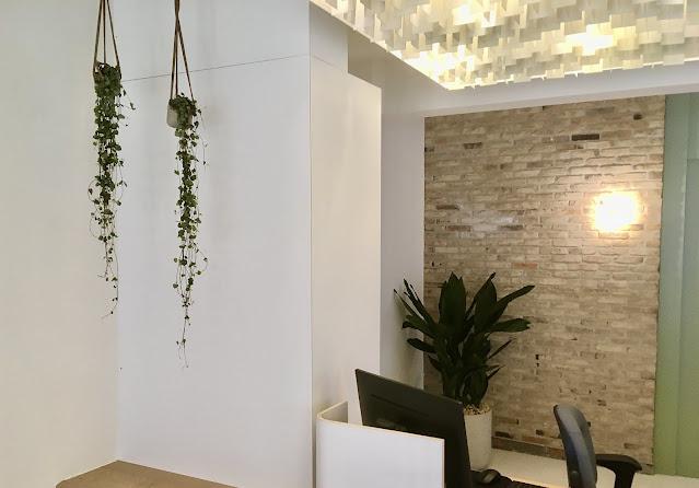 Planten huren voor bedrijf feest evenement met Retro vintage plantenbak op pootjes met Aspidistra planten