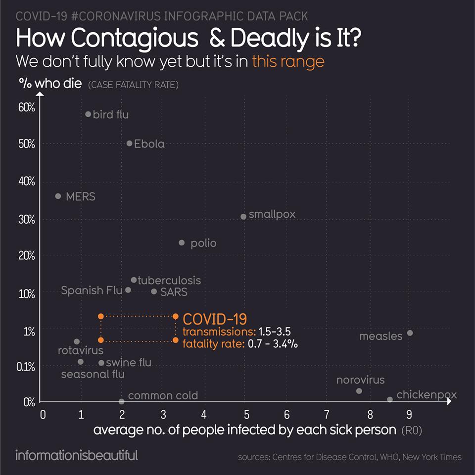 Coronavirus Infographic - 4