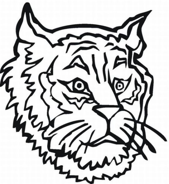 T1gres t1med for Cub scout coloring pages