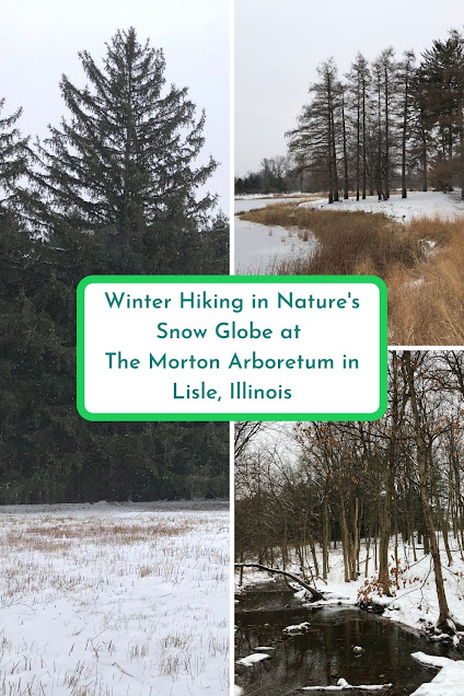 Winter Hiking in Nature's Snow Globe at The Morton Arboretum