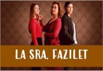 Ver La Señora Fazilet y Sus Hijas Capítulos Completos