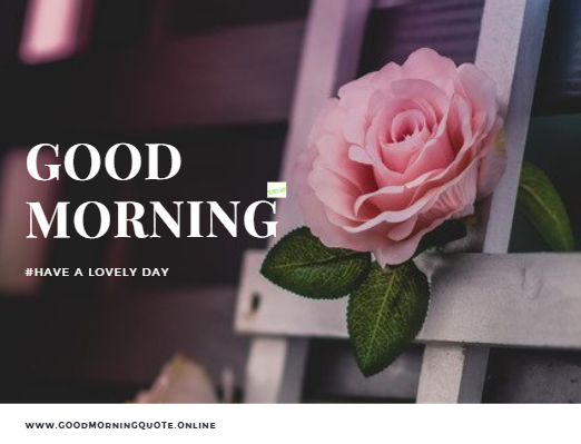 50 Best Good Morning Quote With Images Good Morning Images Hd