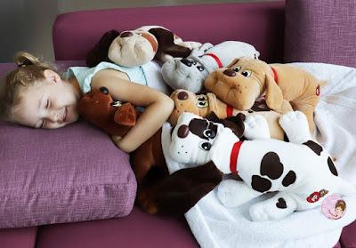 Pound Puppies toys