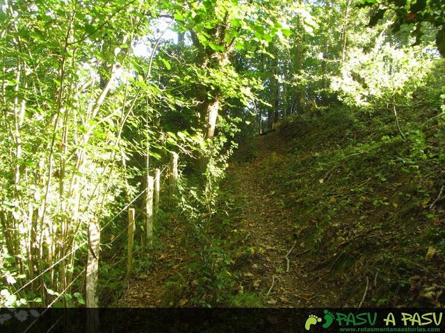 Camino al Fresnedal en Cabrales