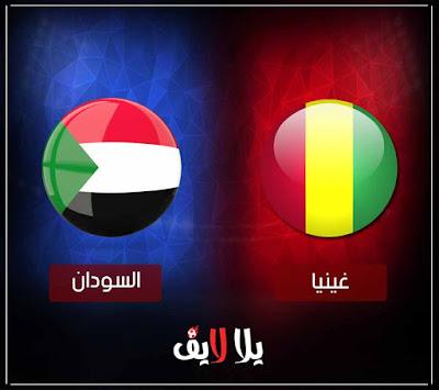 مشاهدة مباراة السودان وغينيا بث مباشر اليوم في تصفيات كأس أمم أفريقيا 2019