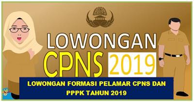 Lowongan Formasi Pelamar CPNS dan PPPK tahun 2019
