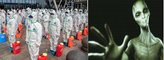 https://www.thebirdali.com/2020/04/coronavirus-pandemic.html
