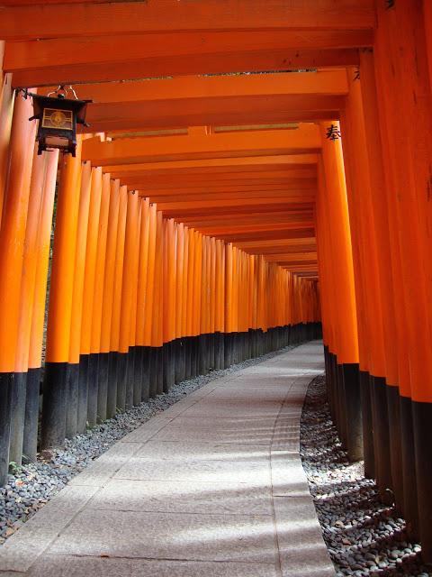 lo stupefacente corridoio di torii più piccoli
