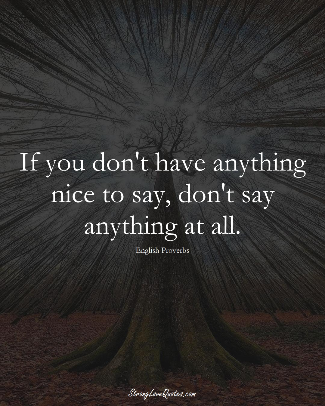 If you don't have anything nice to say, don't say anything at all. (English Sayings);  #EuropeanSayings