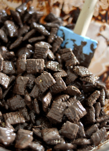 Rice-Chex-Cereal-and-Melted-Dark-Chocolate-tasteasyougo.com