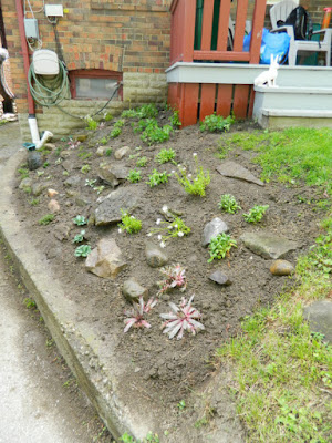 New Toronto Forest Hill rock garden after by Paul Jung Gardening Services