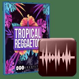 Audentity Tropical Reggaeton