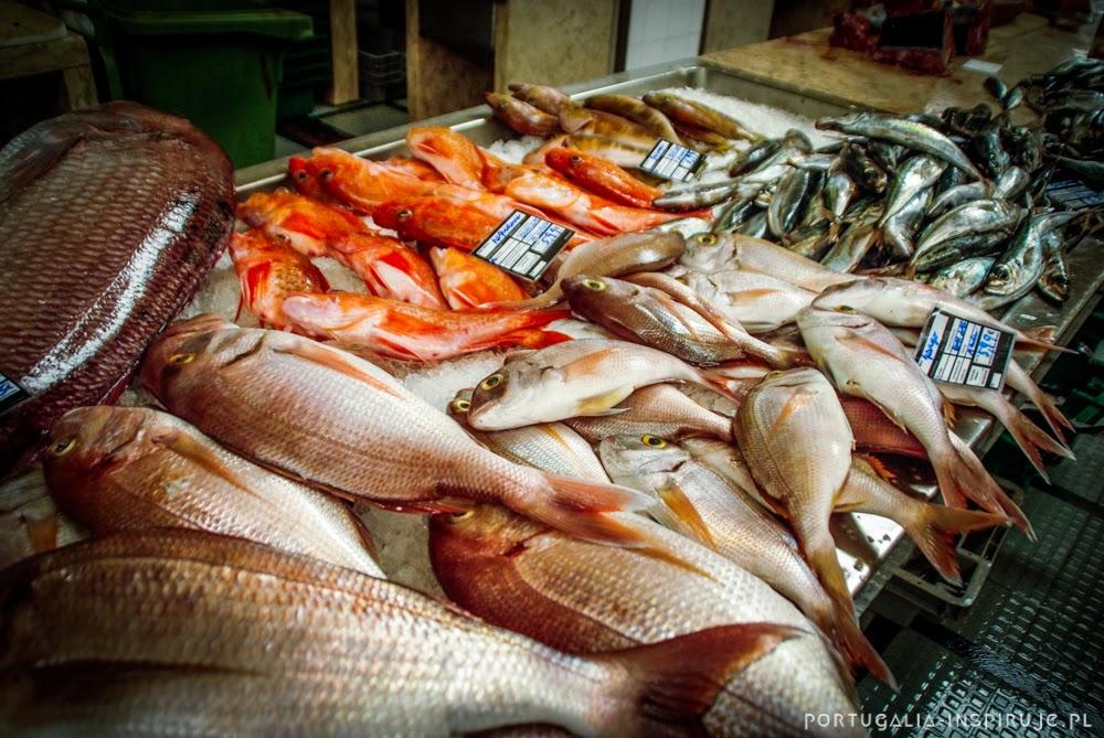 Madera przewodnik zdjęcia fotografie zwiedzanie 10 powód by odwiedzić Madeire i Porto Santo