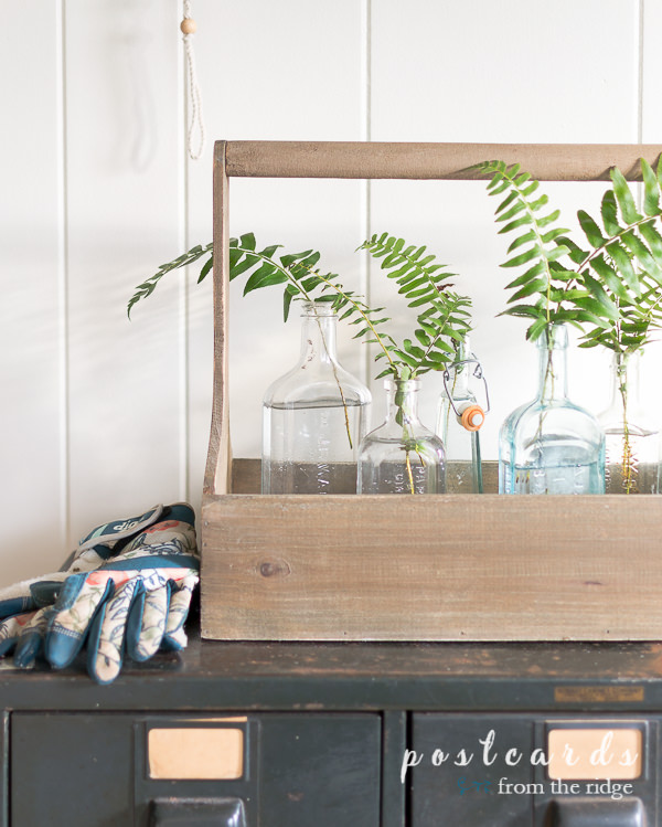 wooden toolbox with fern fronds in vintage glass bottles