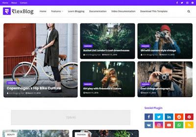 FlexBlog Premium Blogger Template