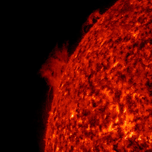 Two Solar Prominences