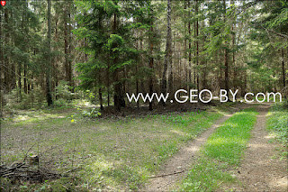Перекресток от польско-советской границы в стражницу ''Барковщины''