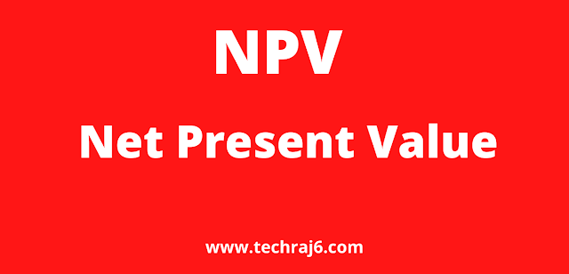 NPV full form, What is the full form of NPV