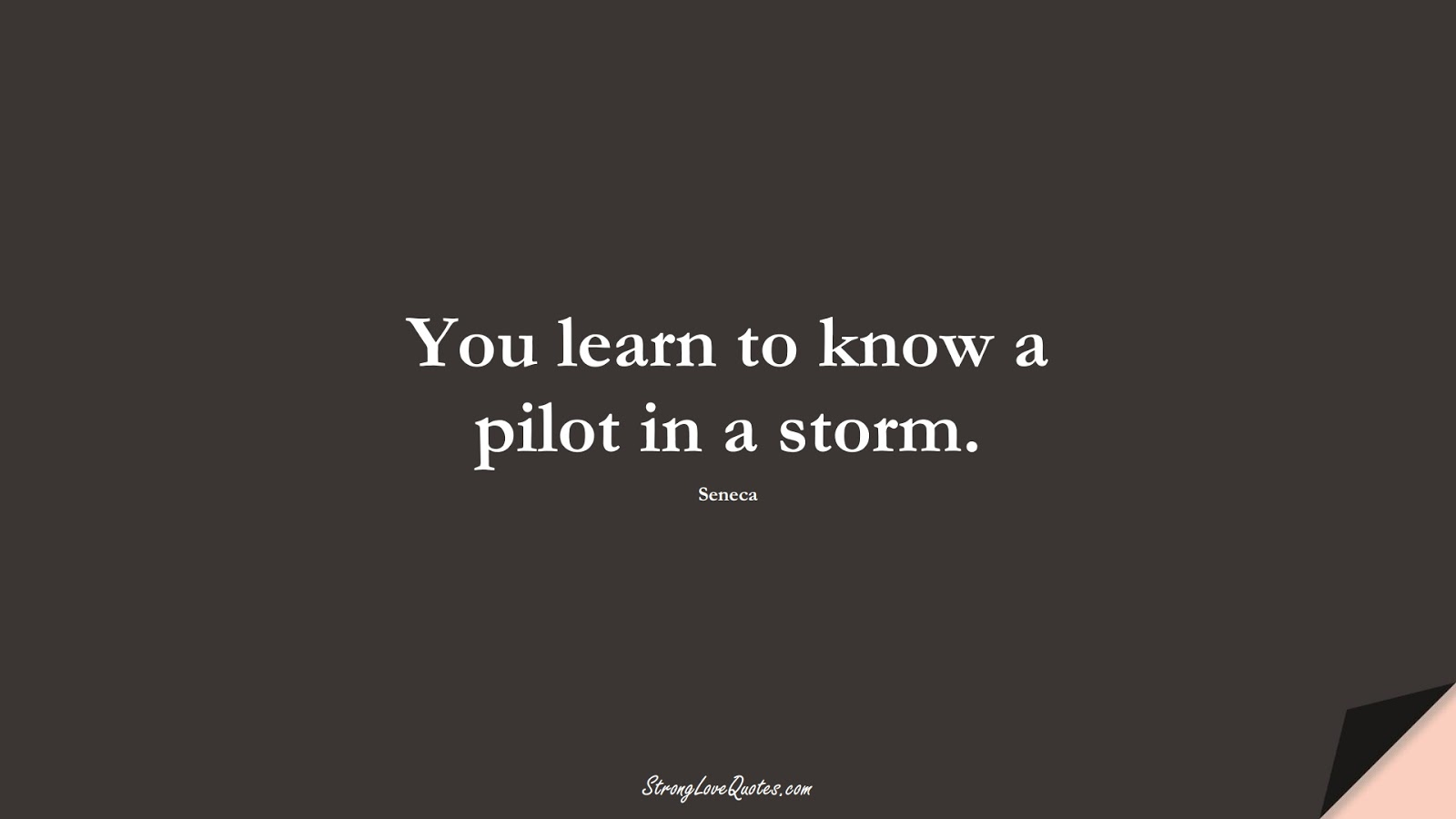 You learn to know a pilot in a storm. (Seneca);  #EducationQuotes