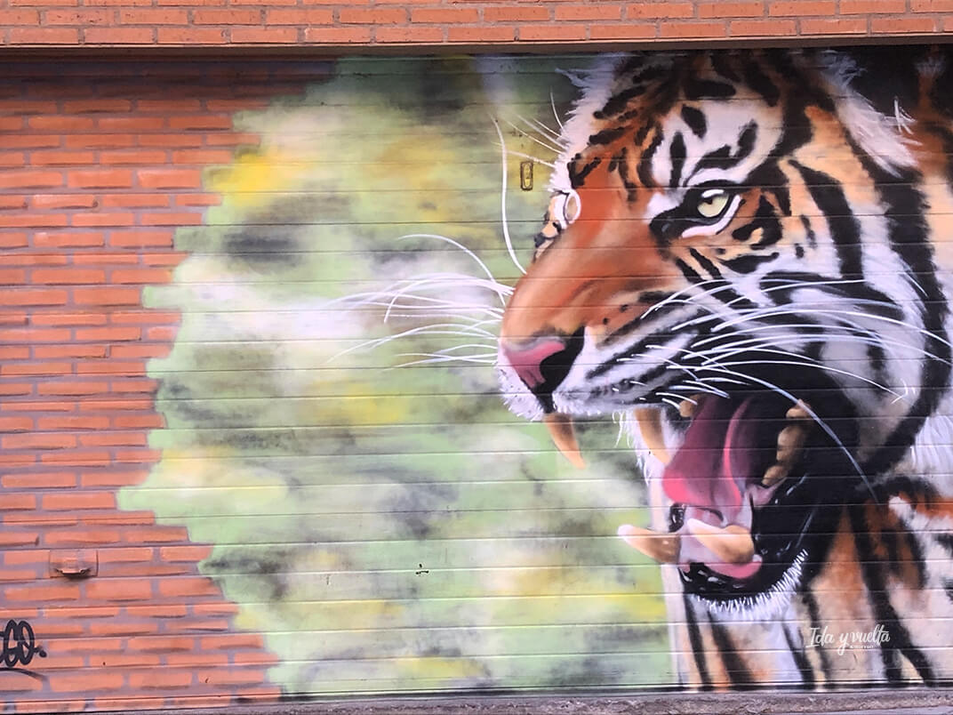 Tigre en Barrio del Oeste