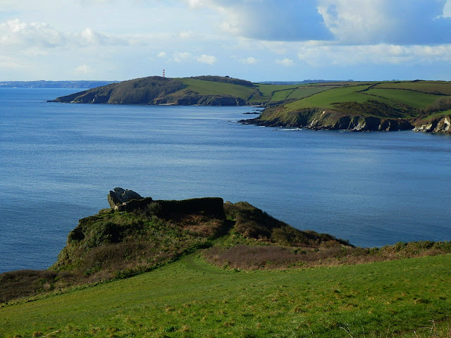 Sea and Cliffs across from Polruan to Gribbin Head