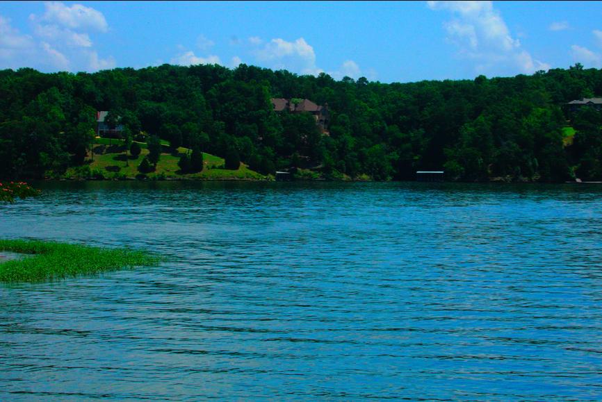 Floridan Blogger: T-Town photo of the day: Lake Tuscaloosa